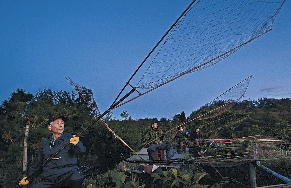 坂網を構えてマガモを待つ猟師=15日午後5時10分、加賀市片野町