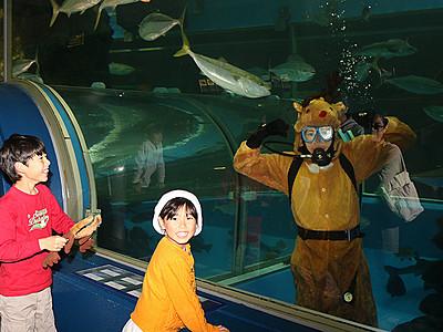 トナカイダイバー登場 魚津水族館、クリスマス企画続々