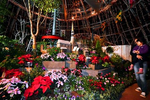 クリスマスイルミネーションに彩られた展示温室=11月23日、福井県坂井市の県総合グリーンセンター