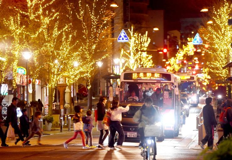 街路樹がイルミネーションで彩られた長野市の中央通り=24日午後5時20分