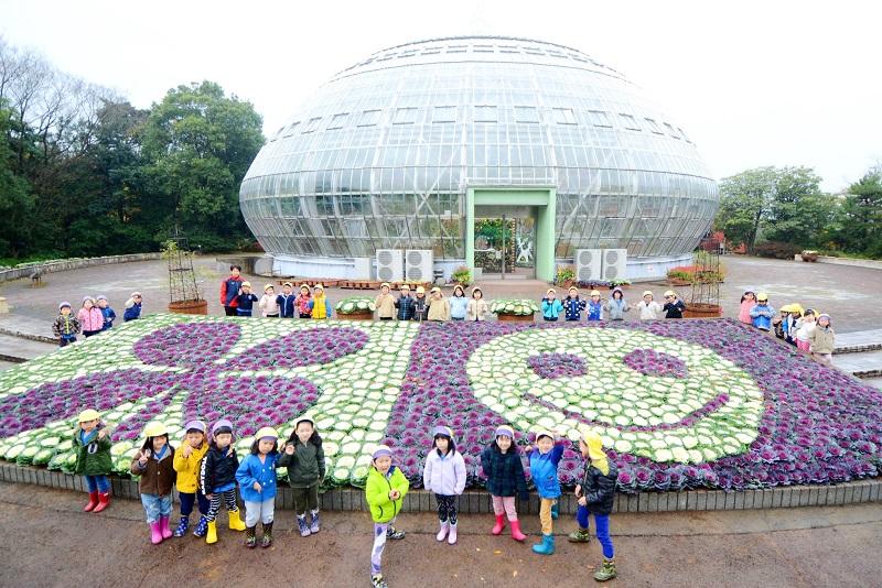 園児がデザインした葉ボタンの花壇=11月22日、福井県坂井市の県総合グリーンセンター
