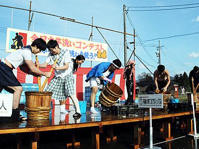 サトイモ ピカピカに 井波で全日本いも洗いコンテスト