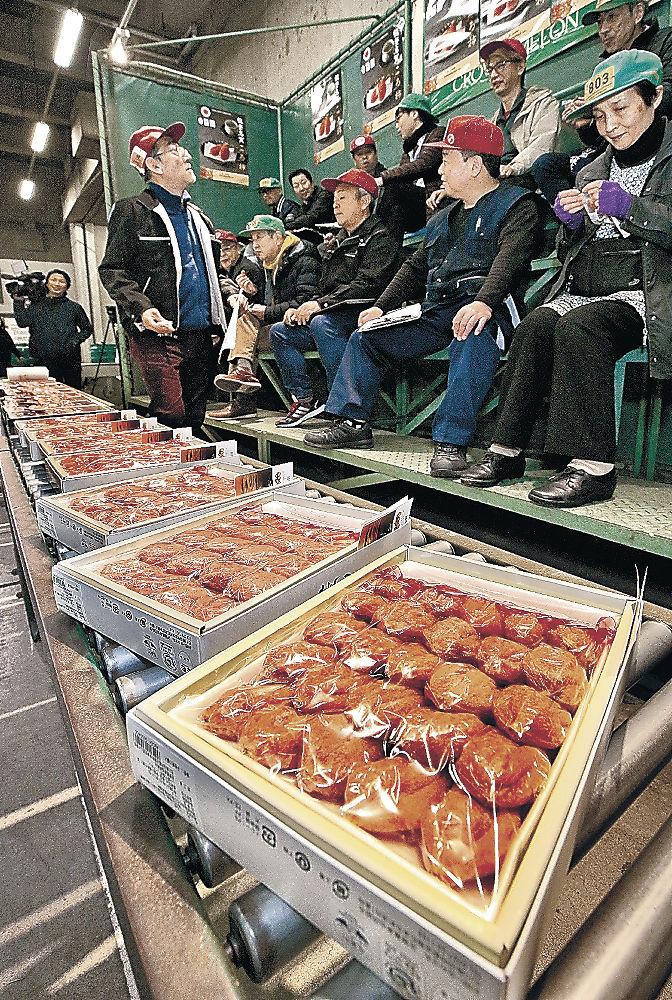金沢市中央卸売場で行われた能登志賀ころ柿の初競り