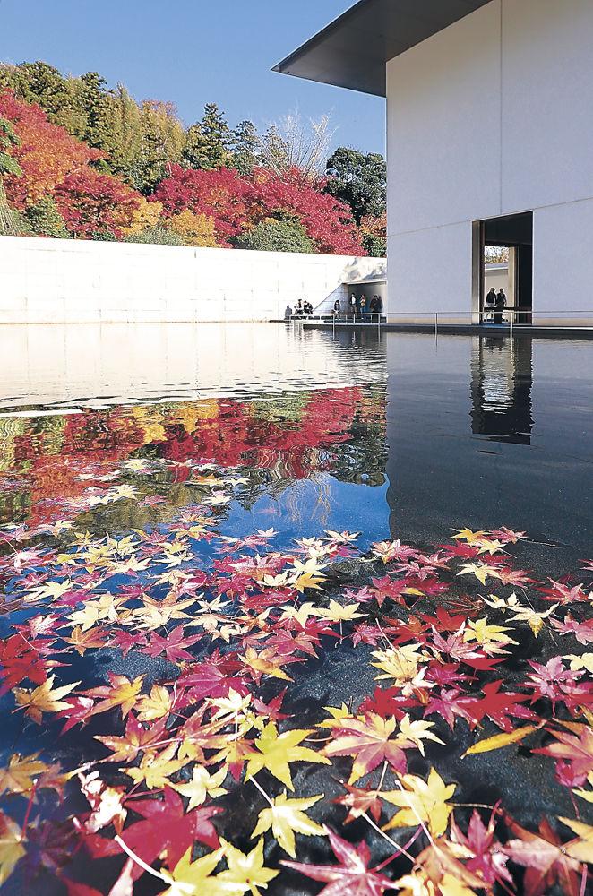 紅葉で彩られた「水鏡の庭」=金沢市の鈴木大拙館