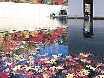 去りゆく秋、水鏡染める 金沢・鈴木大拙館