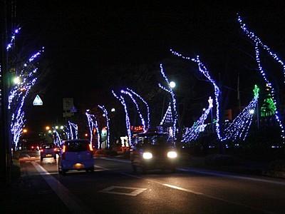 華やか青のトンネル 街路樹イルミネーション 見附