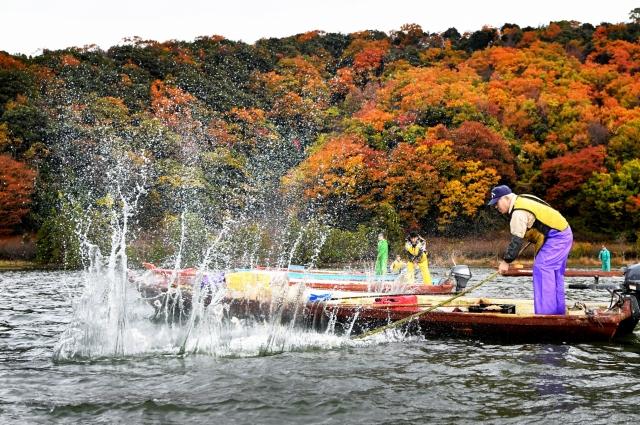 湖面を青竹でたたき、大きな水しぶきを上げる漁師ら=12月1日、福井県若狭町の三方湖