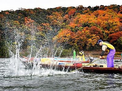 湖面に水しぶき、たたき網漁始まる 若狭・三方五湖