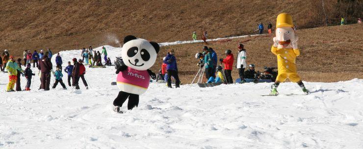 イベントで滑り初めをするゆるキャラたち=8日、湯沢町の苗場スキー場