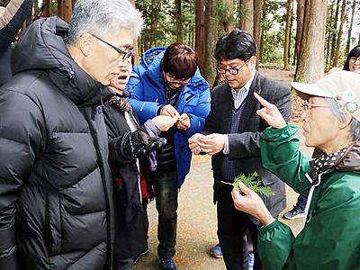 上市の森林セラピー事業視察 韓国の団体