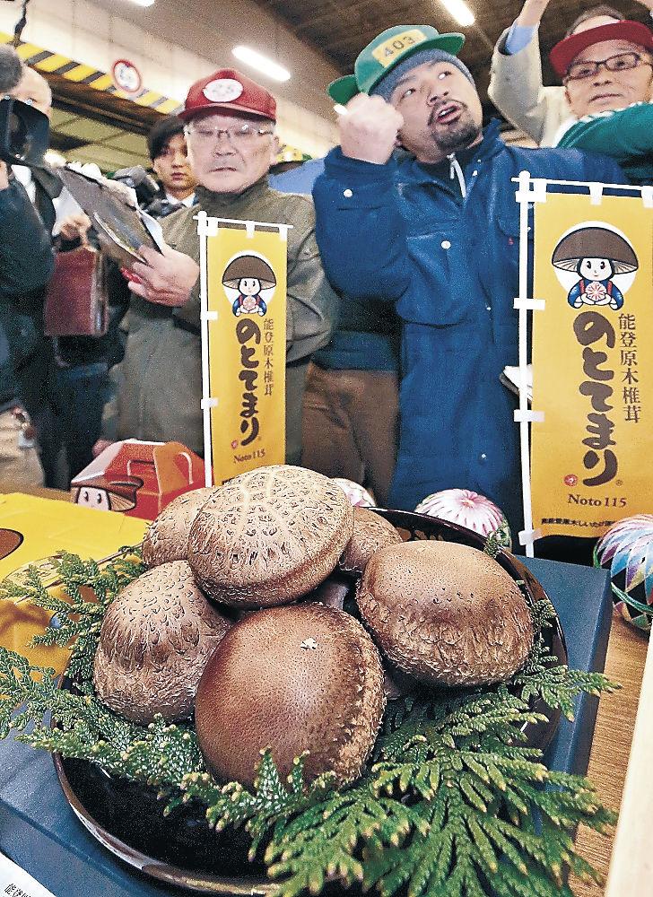 過去最高値となる20万円の値が付いた「のとてまり」のプレミアム=金沢市中央卸売市場