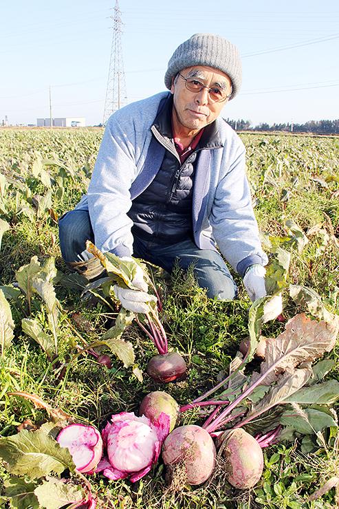もものすけを収穫する柳瀬さん