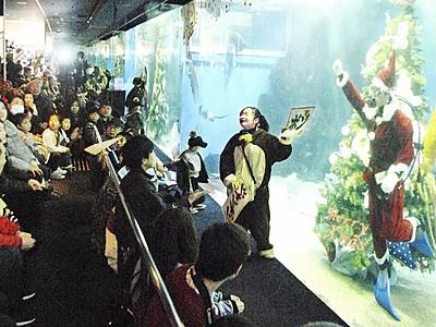 水中サンタとジャンケン勝負 坂井市の越前松島水族館