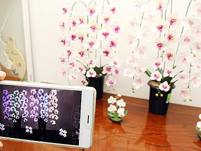 ゛撮っても゛不思議な花 婦中の小松さん、造花に特殊塗料