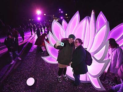 光の芸術、外国人客も注目 善光寺表参道イルミネーション