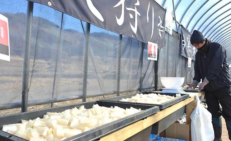 寒天を量り売りするイリセンの「寒天狩り」。製造現場も見学できる
