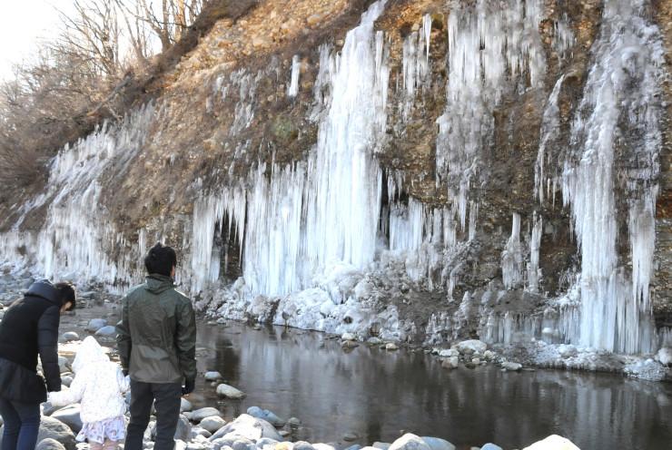 木曽町三岳の崖に姿を現した「白川の氷柱群」