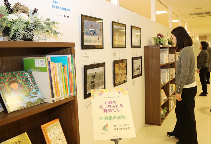 野鳥の写真を展示している「まちライブラリー@高岡おたや」