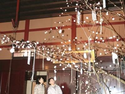 縁起物ふんだんに 関川・渡辺邸に「団子の木」