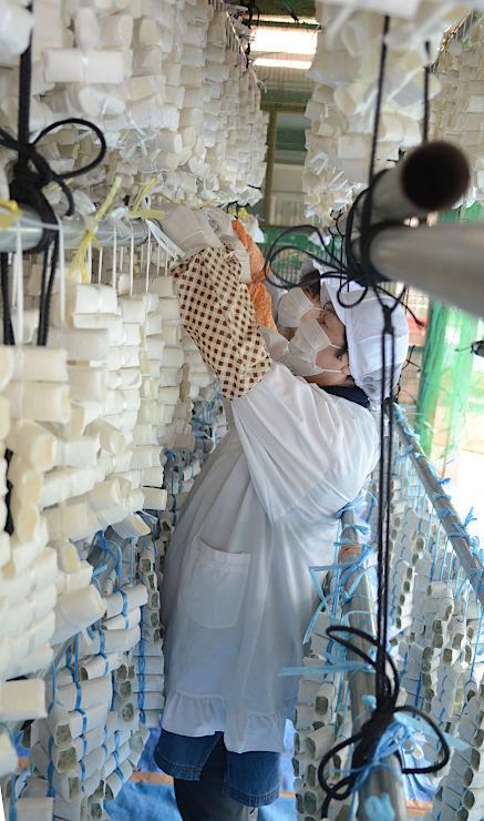 農産物直売所の軒下につるされた凍り餅