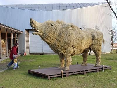 巨大イノシシに驚き いわむろやでわらアート 新潟市西蒲