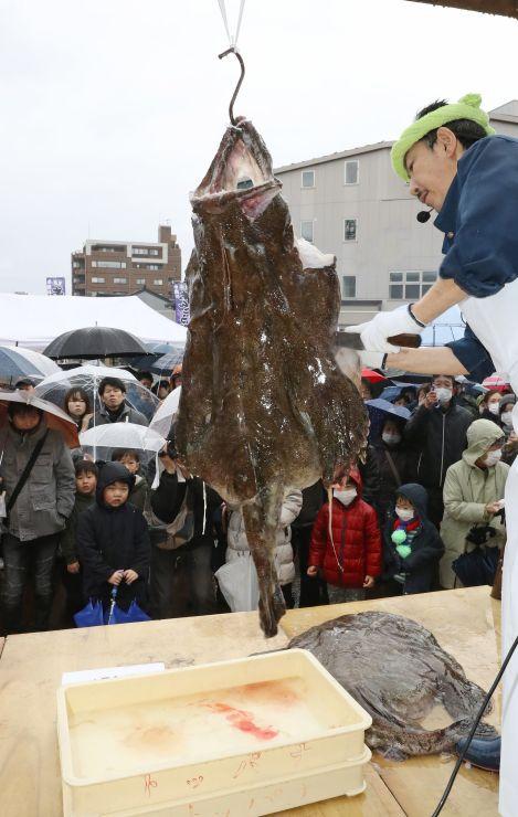 迫力満点のアンコウのつるし切りを見つめる来場者=20日、糸魚川市