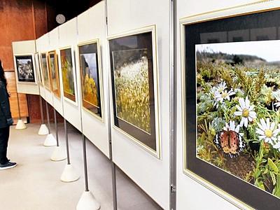 冬の植物園楽しんで 越前町プラントピア、写真展や教室
