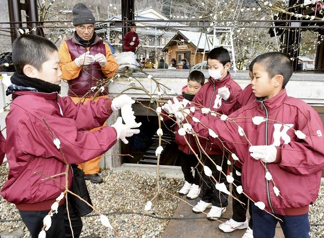 蓬莱祀に向けて、山車を飾る餅花を作る児童=2月3日、福井県越前市粟田部町の花筐公園