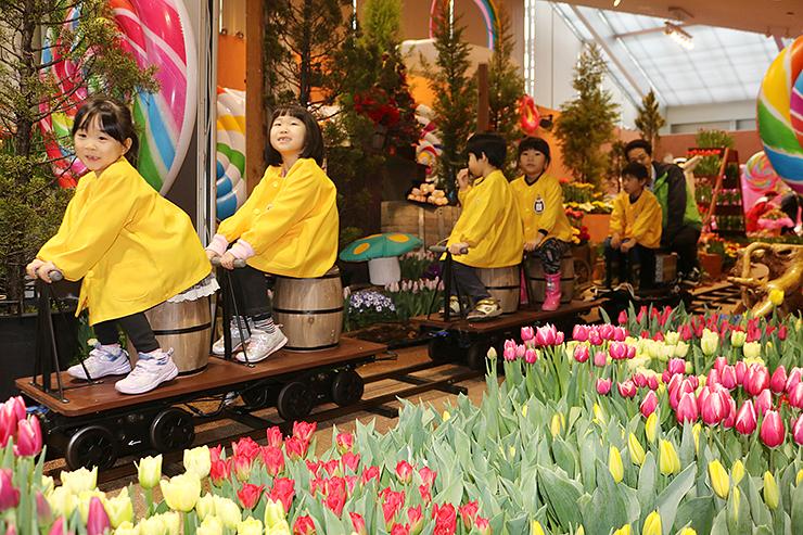 チューリップ1万本が彩る会場をミニSLで見て回る園児たち