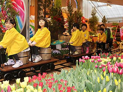 チューリップ1万本彩る 砺波・四季彩館「春を呼ぶ展」