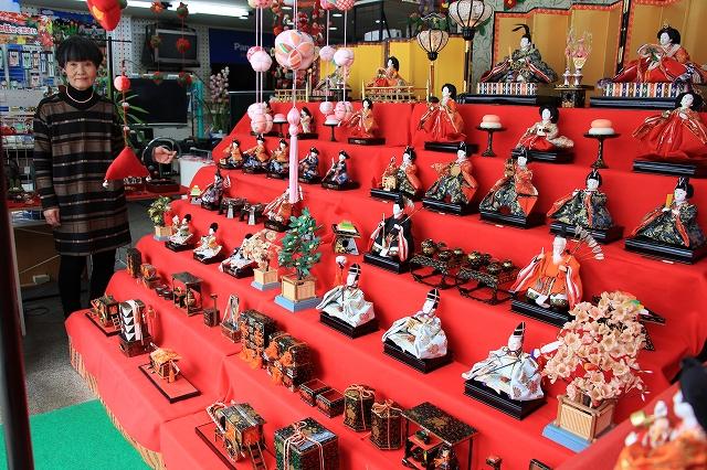 店内に七段飾りのひな人形や手作り作品を飾っている=2月8日、福井県敦賀市相生町
