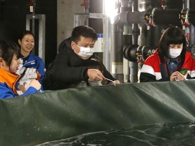 上越市立水族博物館うみがたり 「裏側のぞく」ツアー好評