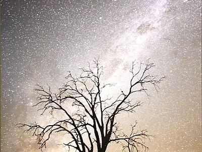 星降る幻想風景ずらり、セーレンプラネット企画展