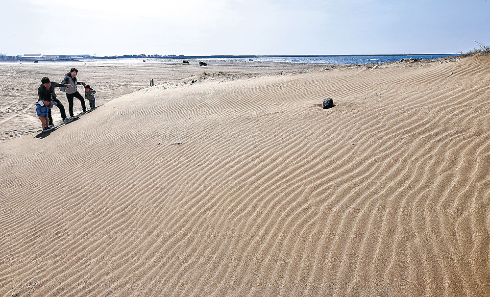 海岸を吹き抜ける風で砂浜につくられた風紋=内灘海岸