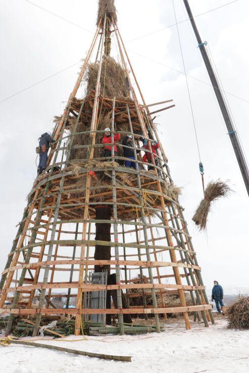 高さ25メートルの杉を中心に組み上がっていくさいの神=5日、長岡市山古志種苧原