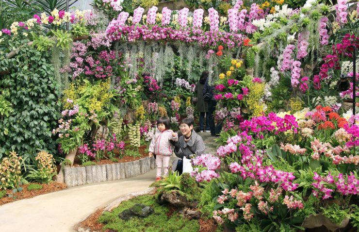 「世界の洋らん展」で、色鮮やかな洋ランと一緒に写真を撮る家族連れら=9日、阿賀野市