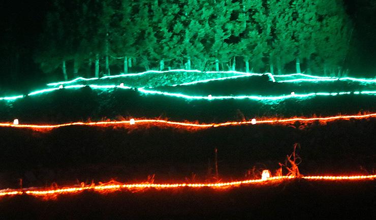 電飾に彩られた段々畑