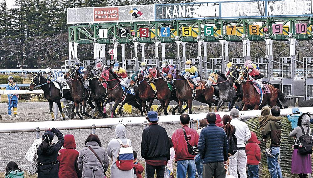 白熱したレースを繰り広げる競走馬=金沢競馬場