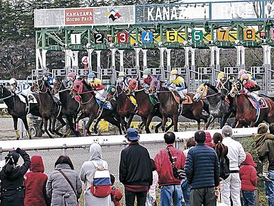 寒さなんの、白熱レース 金沢競馬の19年シーズン開幕