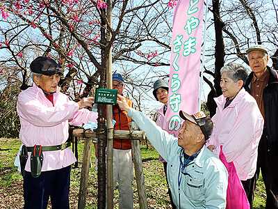 高岡古城公園の桜に銘板 パンフレットも一新