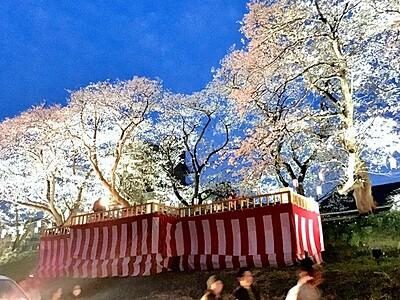 桜の名所、足羽川堤防を照らす 3月30日からイベント