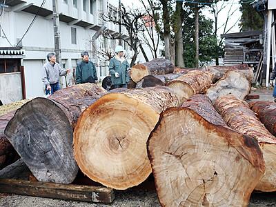九州産クスの丸太到着 いなみ国際木彫刻キャンプ