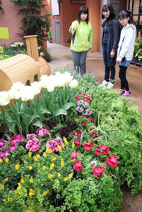 春を彩る花々が飾られた館内=チューリップ四季彩館