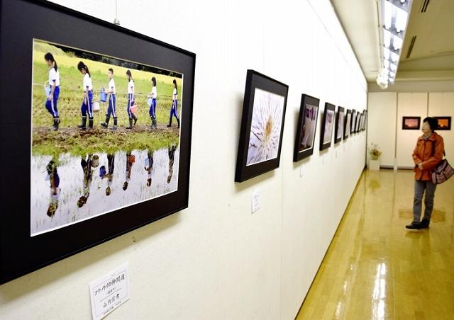 会員が工夫を凝らした写真59点を披露しているつくしの会写真展=3月28日、福井県越前市ふるさとギャラリー叔羅