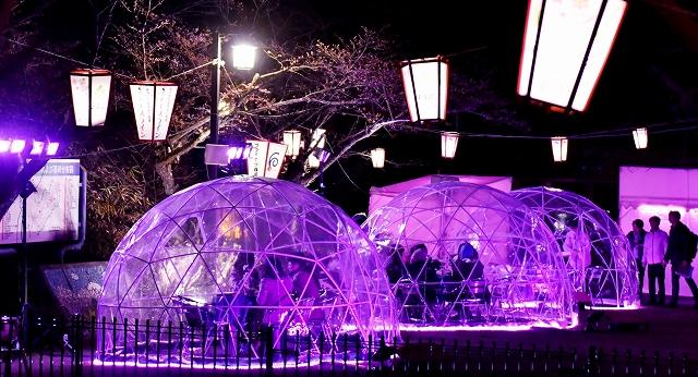 ライトアップや透明ドームで幻想的な花見空間が演出された三段広場=3月28日夜、福井県福井市の足羽山