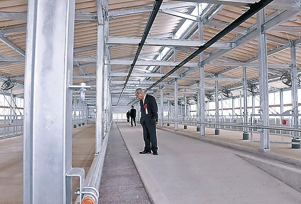 完成した肥育舎=能登町泉の能登牛肥育実験農場