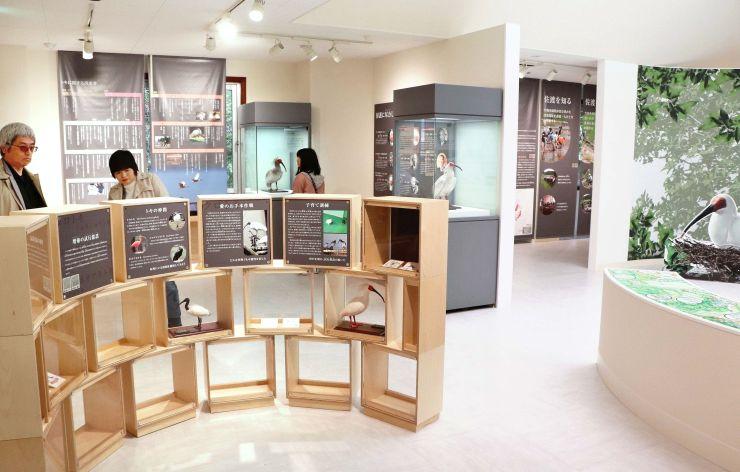 展示内容を一新したトキ資料展示館=4月2日、佐渡市新穂長畝