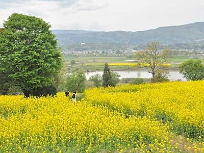 おさんぽバス、春も夏も秋も 新幹線飯山駅発10ルート