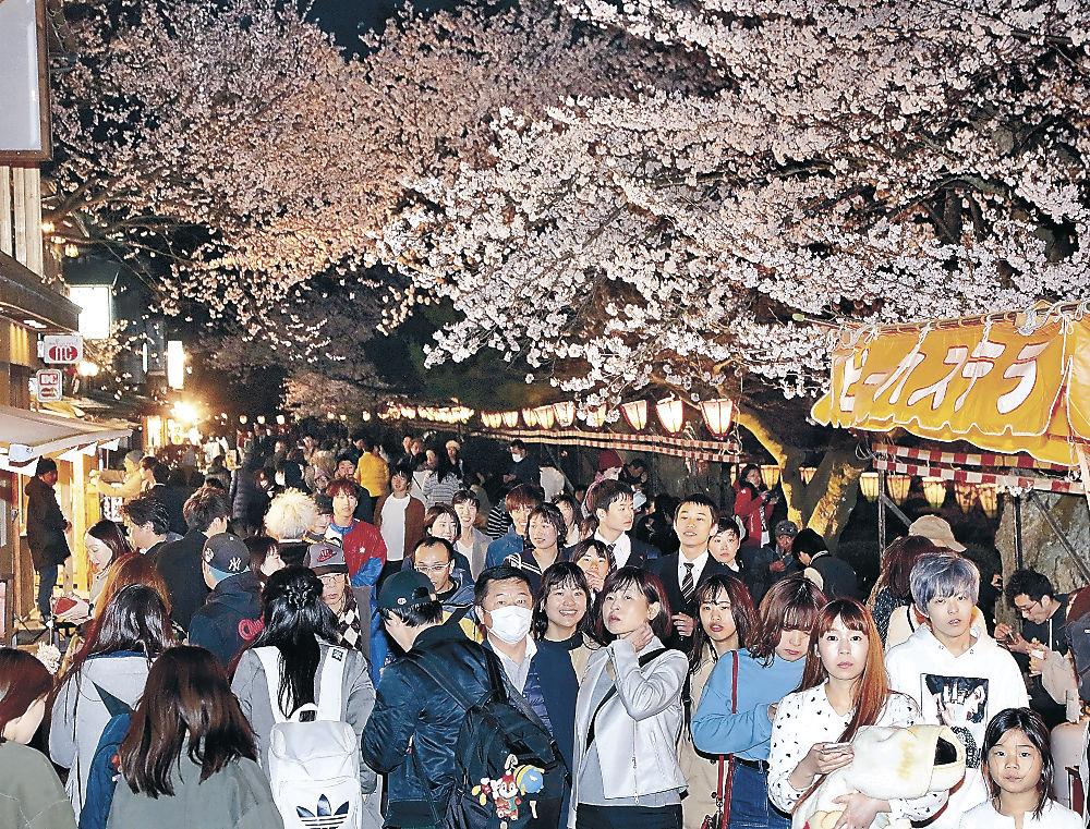夜桜見物を楽しむ来園者=兼六園
