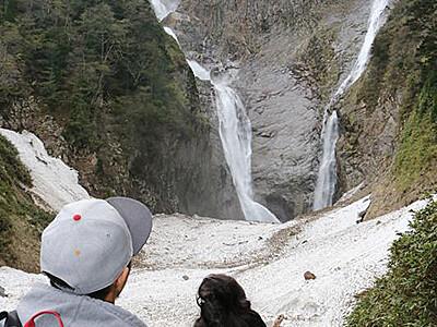 称名滝観光に電動カー 高齢者らの負担軽減へ導入